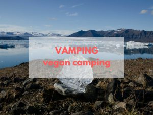 Vamping in Island – Vegan Camping Dinner